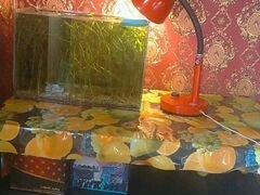 Аквариум, столик, лампа