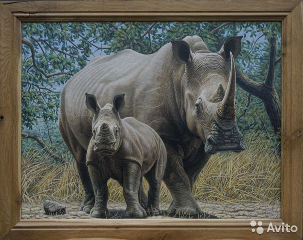 Картина Носороги,акрил 90см х 70см