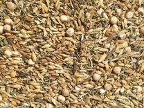 Зерносмесь.горох.кукруза.пшеница.ячмень.корма